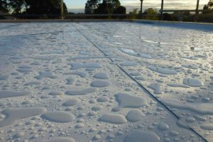 How to Choose a Company for Waterproofing Services in Sydney?
