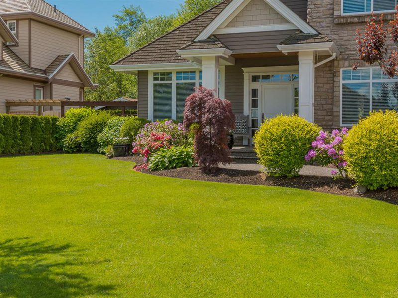 The Dos and Don'ts of Landscaping