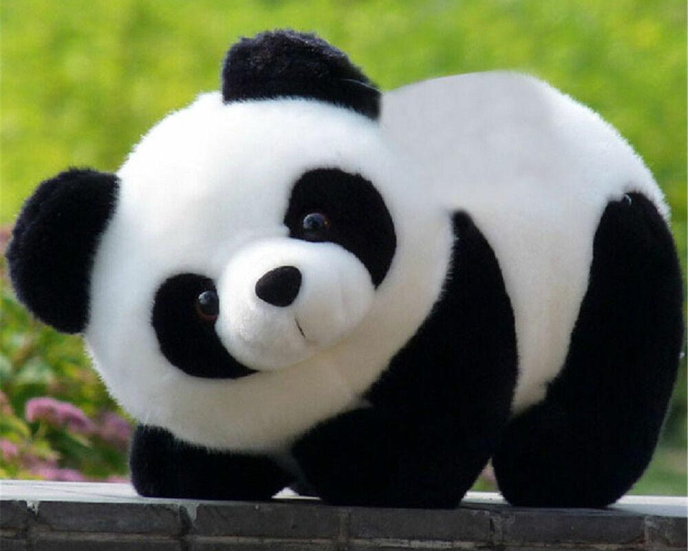 Tips That Will Guide You How To Shop Panda Bear Toy In Australia