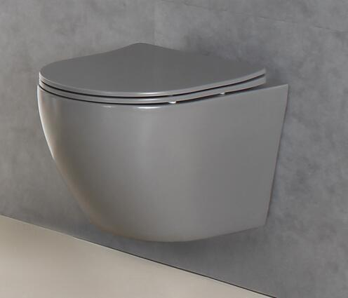 Why Should You Invest In a Rimless Back To Wall Toilet At Your Home?