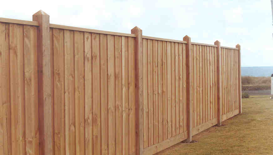 Reason Why Timber Palings Fences Have Endured?