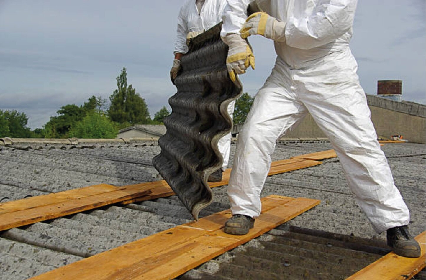 Why Hire Professionals For Asbestos Removal?