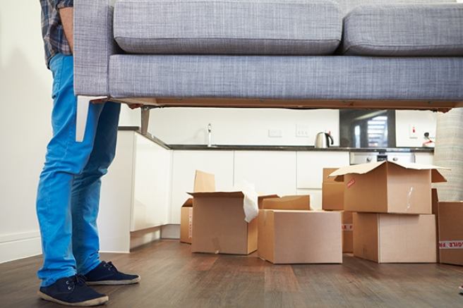 How North Shore Furniture Removals Can Help You During Relocation?